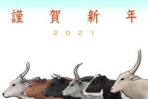 イラストレーター タムラゲン ( タムラ・ゲン ) の公式サイトです。 The official website of Gen Tamura illustrator painter artist in Japan 画家 田村元 ウェブサイト ホームページ 香川県