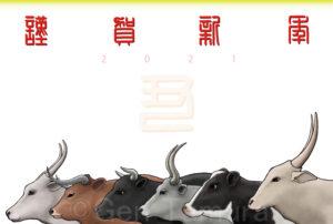 2021年 年賀状 丑年 PIXTA イラスト : タムラゲン ( タムラ・ゲン )