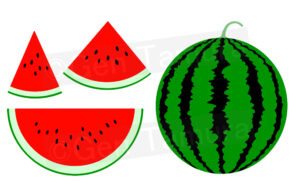 Watermelon illustration iStock